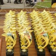 В ГАУ ДО «ДЮСШ «Метеор» состоялся областной физкультурно-спортивный Фестиваль среди инвалидов, посвящённый Всероссийскому Дню инвалидов