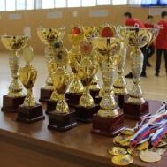 Зональные соревнования регионального этапа Всероссийских спортивных соревнований школьников «Президентские состязания»  в ГАУ РО «СШ «Метеор»