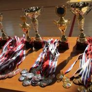 Зональные соревнования регионального этапа Всероссийских спортивных игр школьников «Президентские спортивные игры» в ГАУ РО «СШ «Метеор»