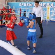 В СШ «Метеор» состоялись всероссийские соревнования по боксу, посвящённые памяти мастера спорта СССР Ю.Васина, чемпионат Рязанской области по боксу